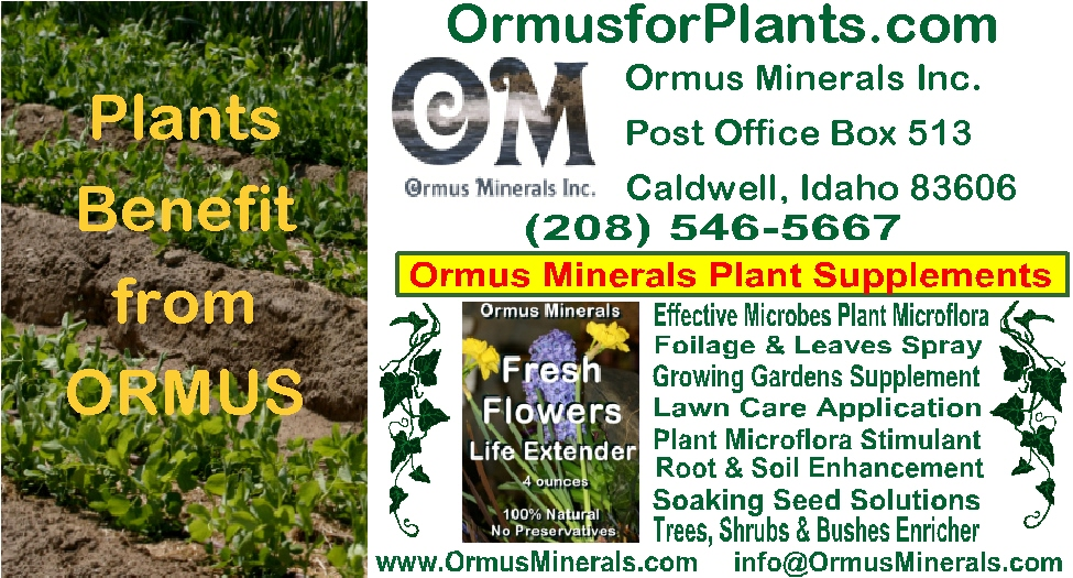 Ormus Minerals Business Card for plants web